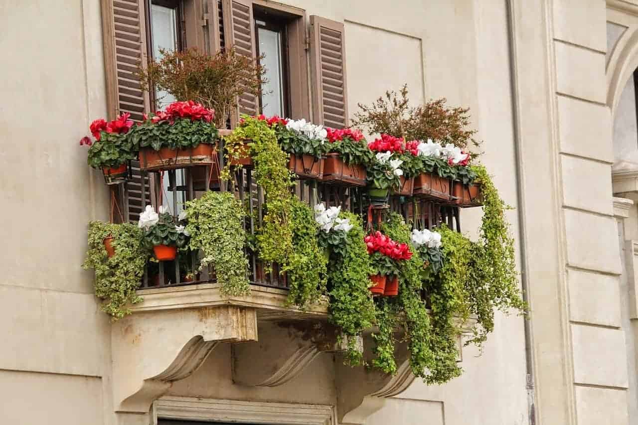 Photo of plants and flowers overflowing a small balcony.